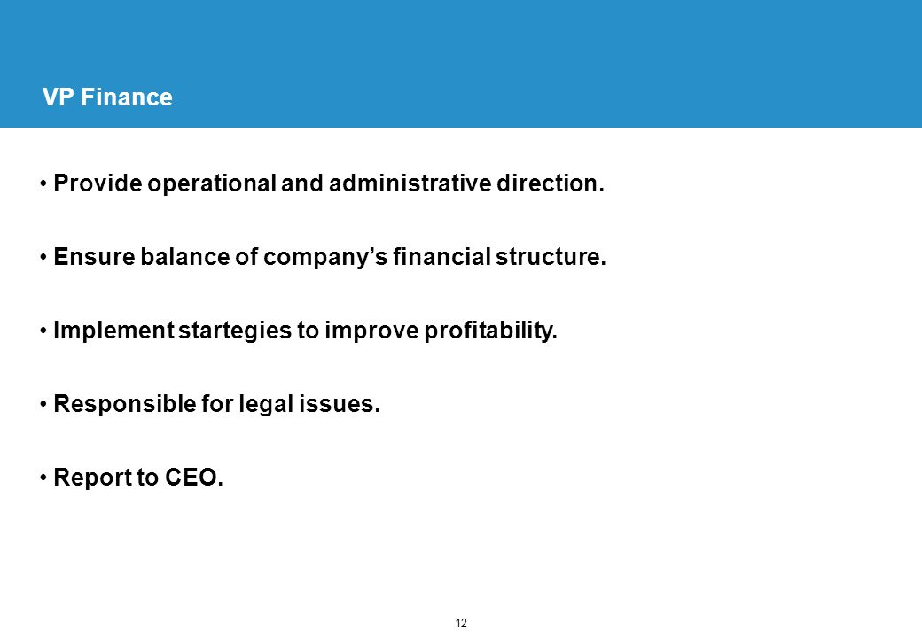 12 VP Finance Provide operational and administrative direction.