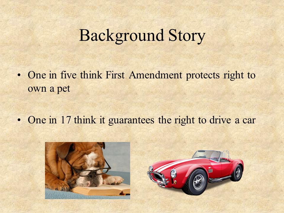 Background Story One in five think First Amendment protects right to own a pet One in 17 think it guarantees the right to drive a car