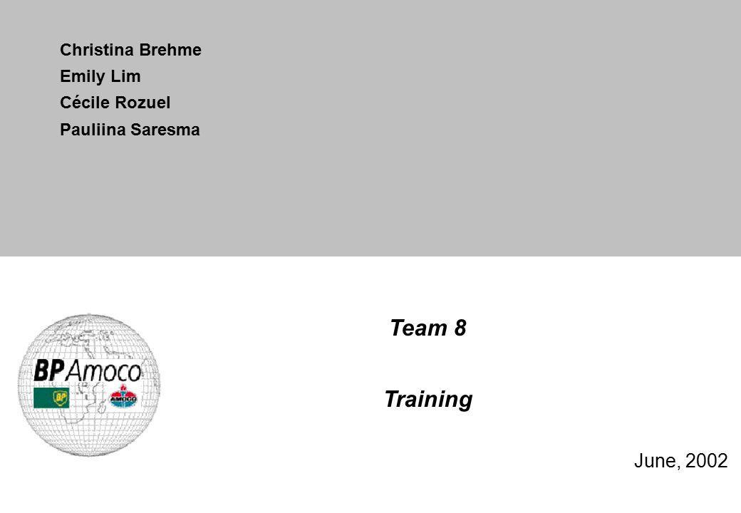 Team 8 Training June, 2002 Christina Brehme Emily Lim Cécile Rozuel Pauliina Saresma