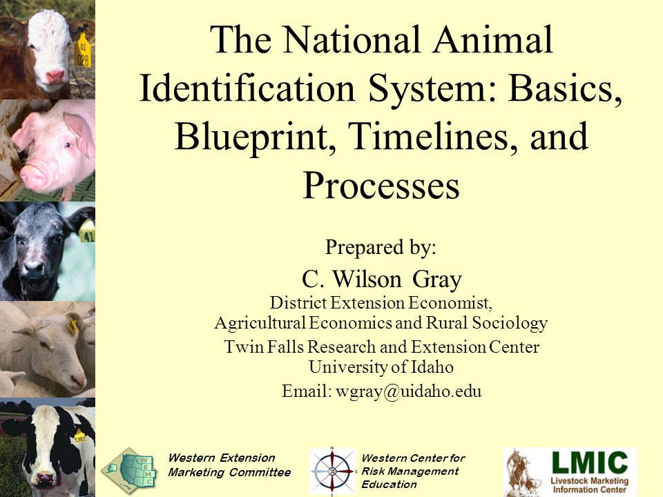 The National Animal Identification System: Basics, Blueprint, Timelines, and Processes Prepared by: C.