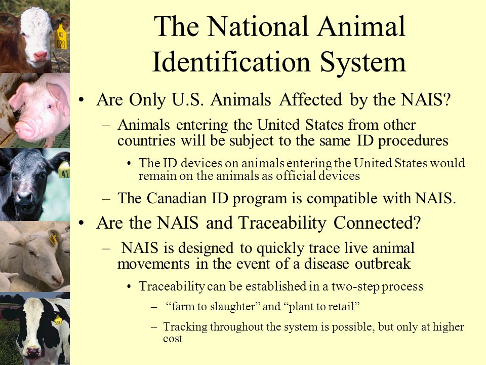 The National Animal Identification System Are Only U.S.