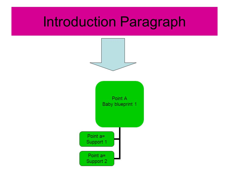 Introduction Paragraph Point A Baby blueprint 1 Point a= Support 1 Point a= Support 2