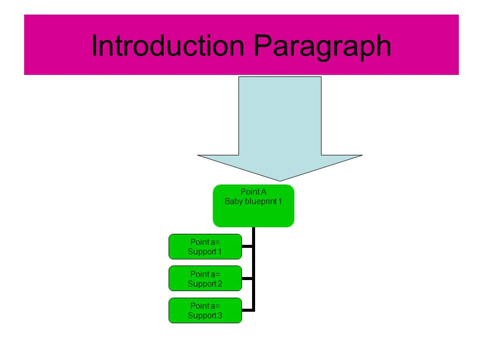 Introduction Paragraph Point A Baby blueprint 1 Point a= Support 1 Point a= Support 2 Point a= Support 3
