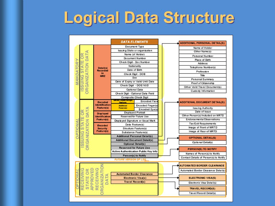 Logical Data Structure