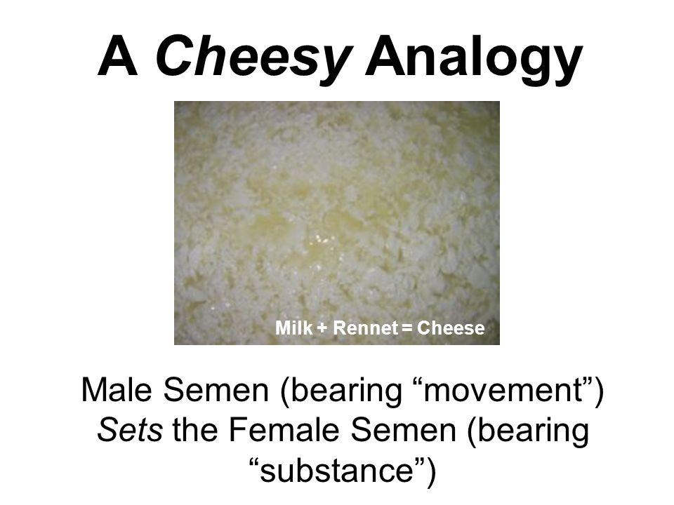 "A Cheesy Analogy Male Semen (bearing ""movement"") Sets the Female Semen (bearing ""substance"") Milk + Rennet = Cheese"