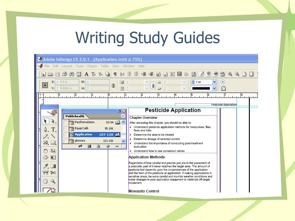 Writing Study Guides