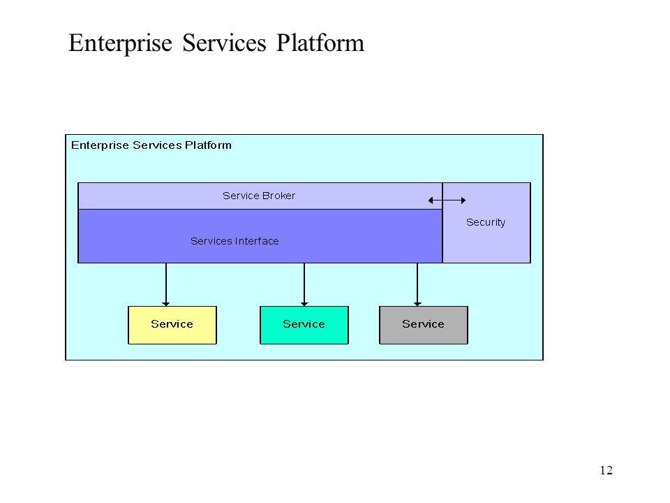 12 Enterprise Services Platform