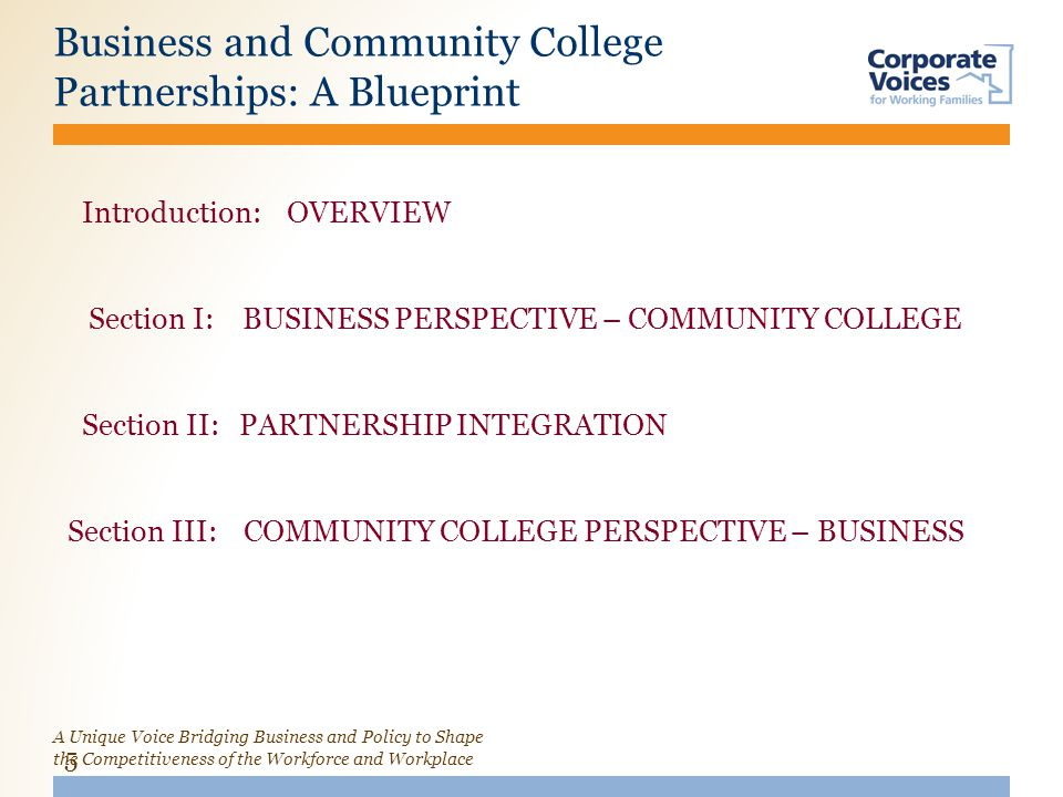 A Unique Voice Bridging Business and Policy to Shape the Competitiveness of the Workforce and Workplace Business and Community College Partnerships: A