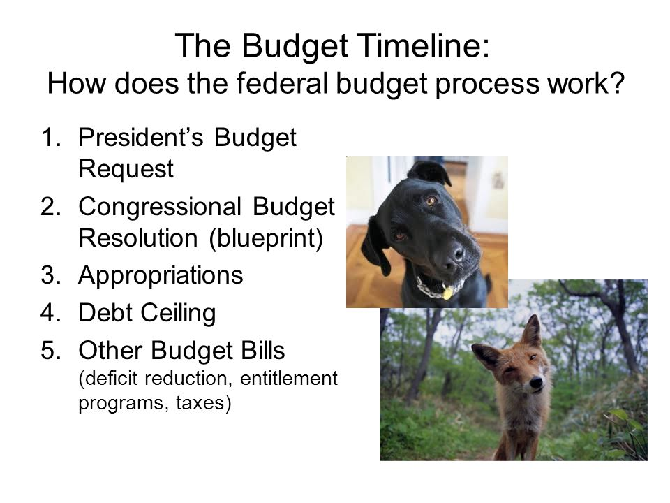 Budget Basics: Types of Budget Laws Does not require annual revision Individual provisions may expire, but tax code is permanent Tax law Funding for mandatory programs Programs can be permanent or require periodic reauthorization Entitlement law Funding for discretionary programs Must be completed each year Annual Appropriations
