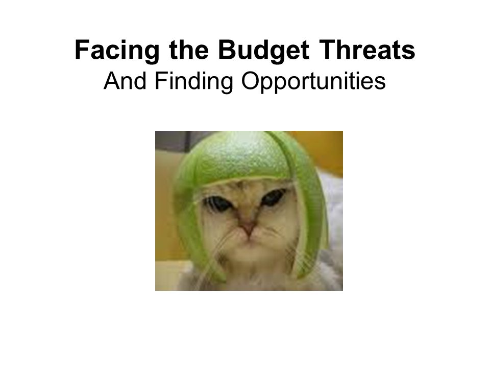 Facing the Budget Threats And Finding Opportunities