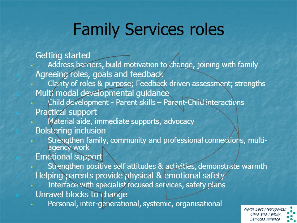 North East Metropolitan Child and Family Services Alliance 1.