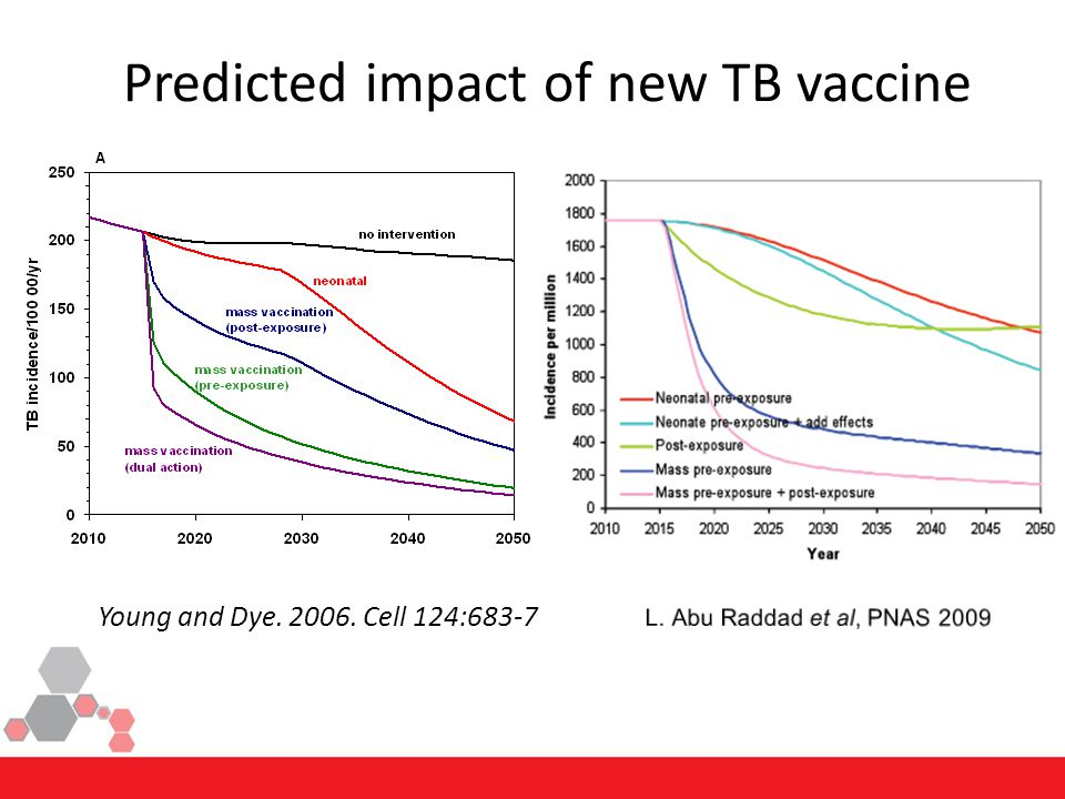 Predicted impact of new TB vaccine Young and Dye. 2006. Cell 124:683-7