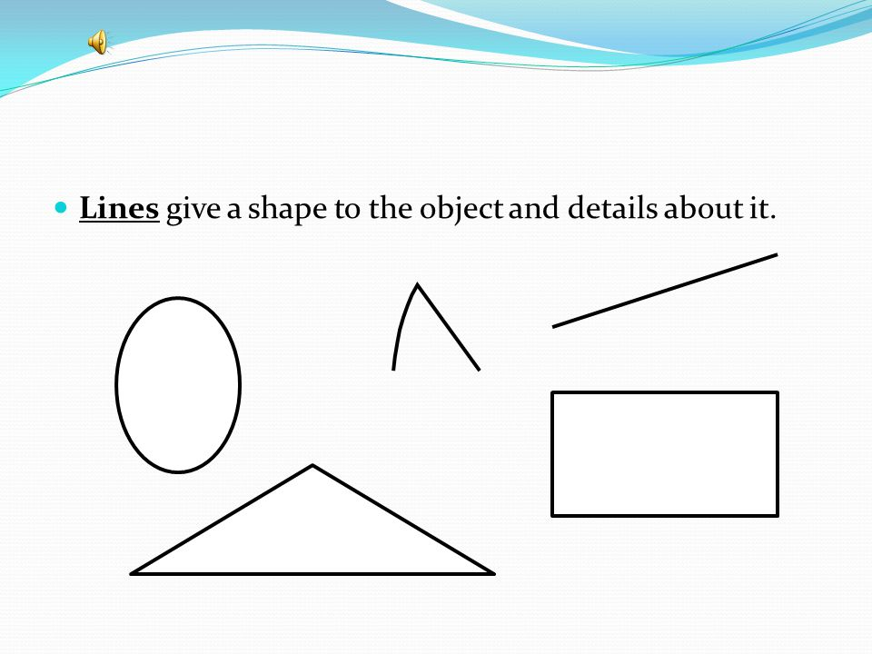 Lines give a shape to the object and details about it.