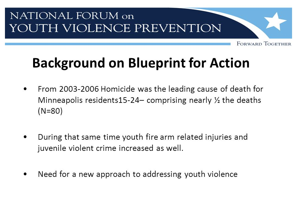 Background on Blueprint for Action From 2003-2006 Homicide was the leading cause of death for Minneapolis residents15-24– comprising nearly ½ the deat