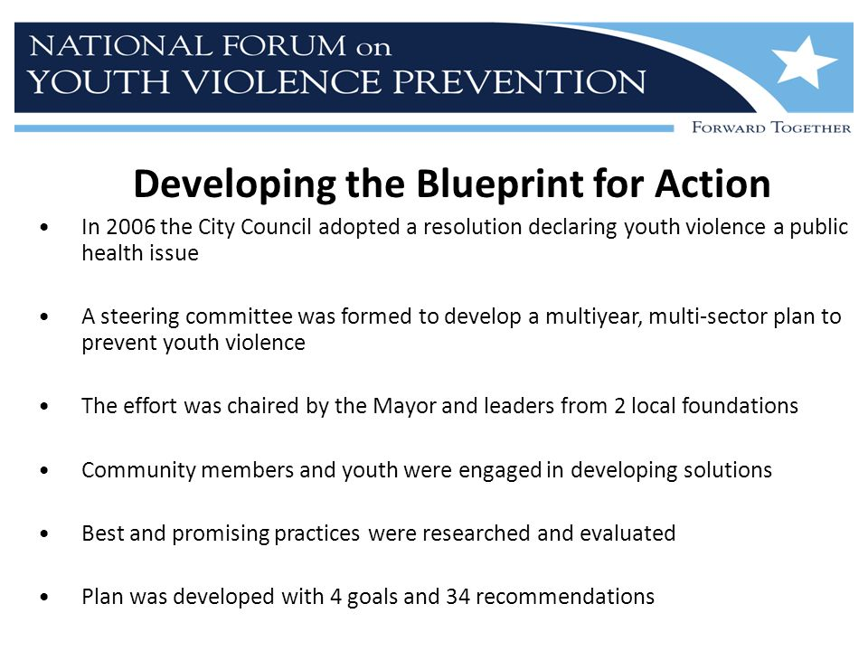 Developing the Blueprint for Action In 2006 the City Council adopted a resolution declaring youth violence a public health issue A steering committee was formed to develop a multiyear, multi-sector plan to prevent youth violence The effort was chaired by the Mayor and leaders from 2 local foundations Community members and youth were engaged in developing solutions Best and promising practices were researched and evaluated Plan was developed with 4 goals and 34 recommendations