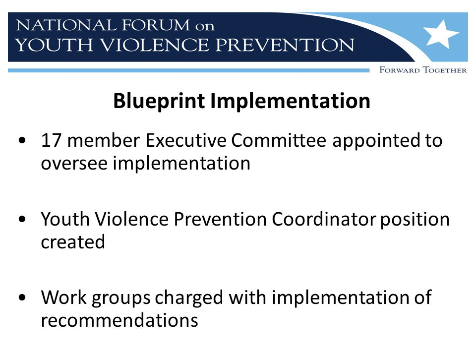 Blueprint Implementation 17 member Executive Committee appointed to oversee implementation Youth Violence Prevention Coordinator position created Work groups charged with implementation of recommendations
