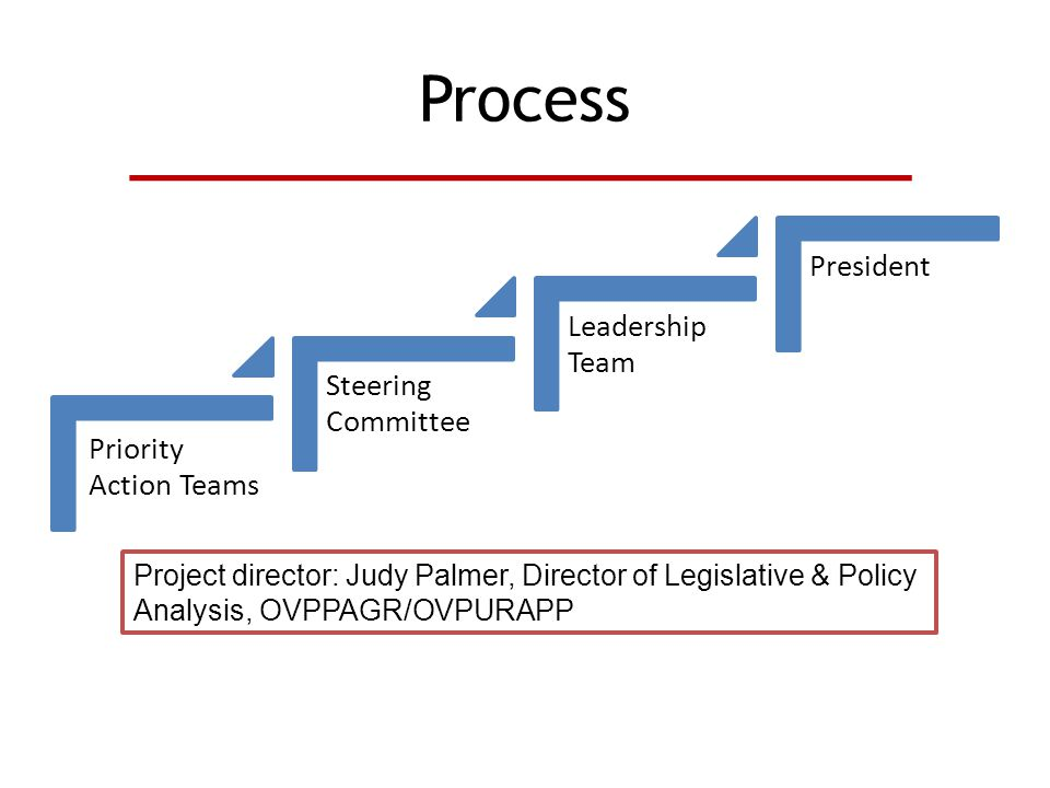 Process Priority Action Teams Steering Committee Leadership Team President Project director: Judy Palmer, Director of Legislative & Policy Analysis, OVPPAGR/OVPURAPP