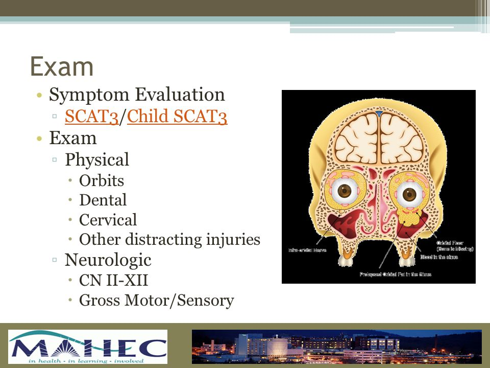 Exam Symptom Evaluation ▫SCAT3/Child SCAT3SCAT3Child SCAT3 Exam ▫Physical  Orbits  Dental  Cervical  Other distracting injuries ▫Neurologic  CN II-XII  Gross Motor/Sensory