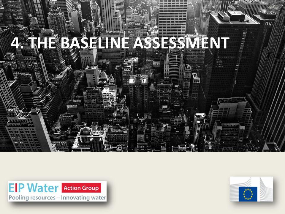 4. THE BASELINE ASSESSMENT