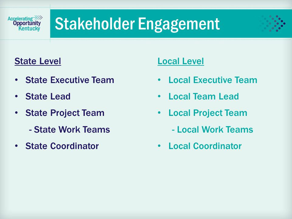 Stakeholder Engagement State Level State Executive Team State Lead State Project Team - State Work Teams State Coordinator Local Level Local Executive Team Local Team Lead Local Project Team - Local Work Teams Local Coordinator