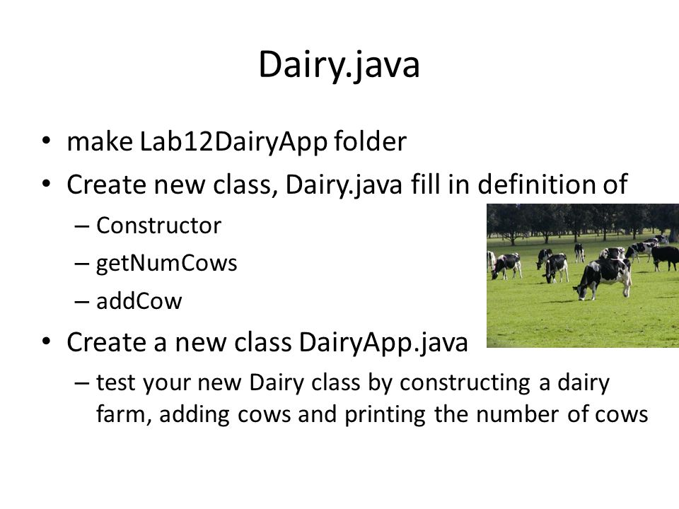 Dairy.java make Lab12DairyApp folder Create new class, Dairy.java fill in definition of – Constructor – getNumCows – addCow Create a new class DairyAp