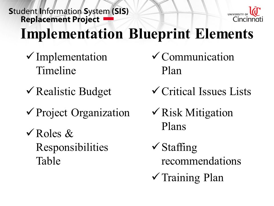 Implementation Blueprint Elements Implementation Timeline Realistic Budget Project Organization Roles & Responsibilities Table Communication Plan Critical Issues Lists Risk Mitigation Plans Staffing recommendations Training Plan