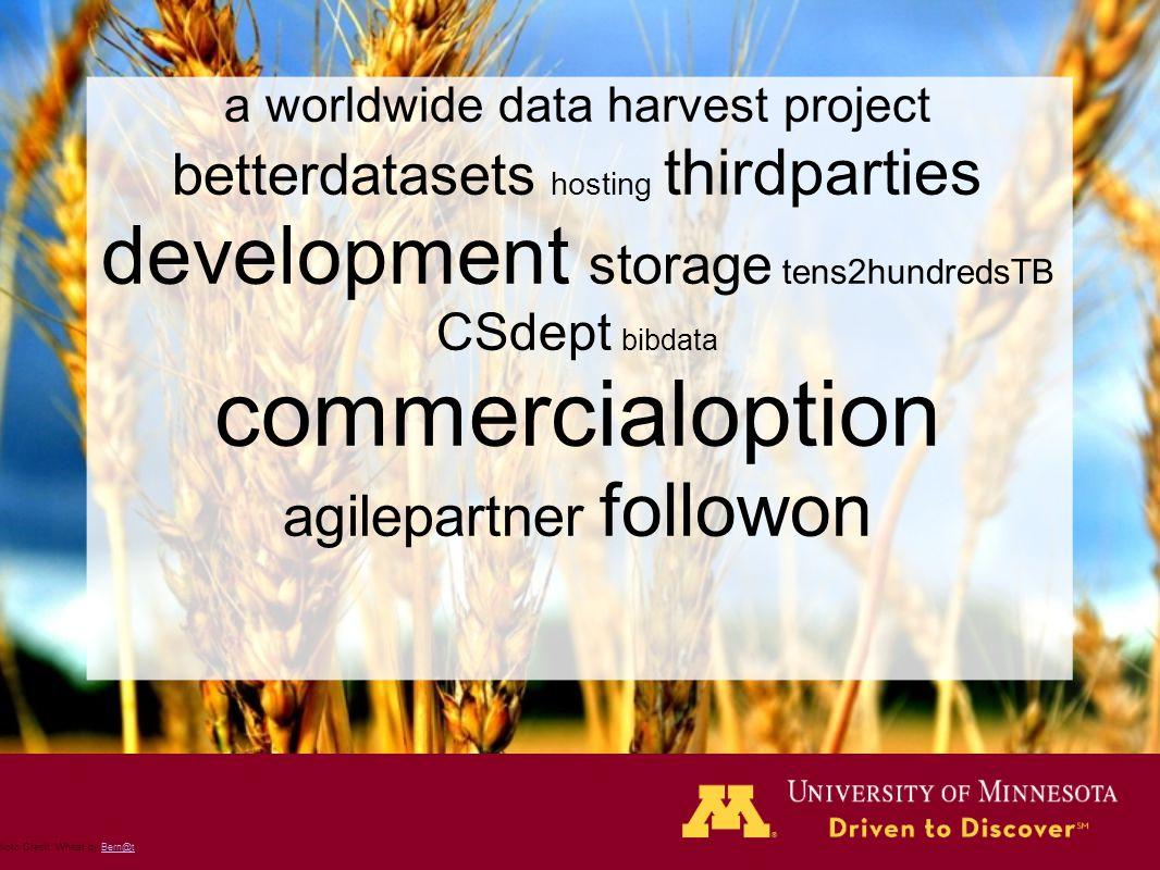 Photo Credit: Wheat by Bern@tBern@t a worldwide data harvest project betterdatasets hosting thirdparties development storage tens2hundredsTB CSdept bi