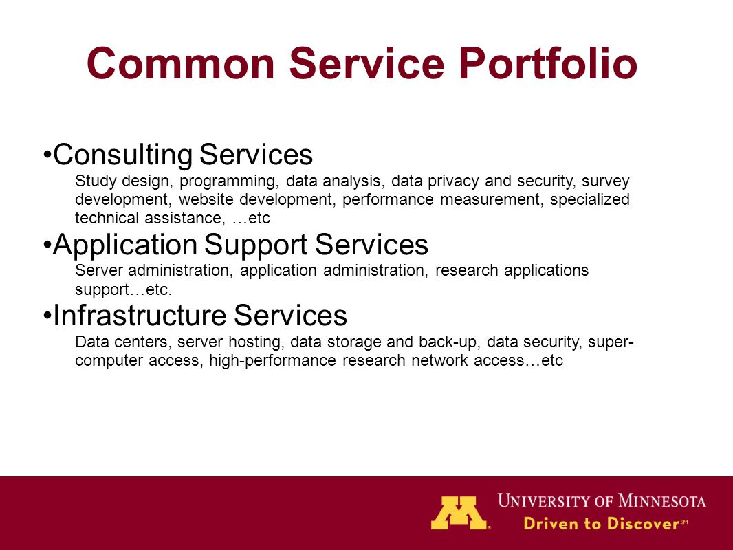Common Service Portfolio Consulting Services Study design, programming, data analysis, data privacy and security, survey development, website developm