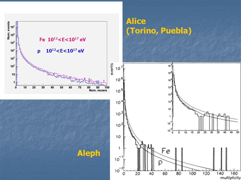 Fe 10 12 <E<10 17 eV p 10 12 <E<10 17 eV Alice (Torino, Puebla) Aleph