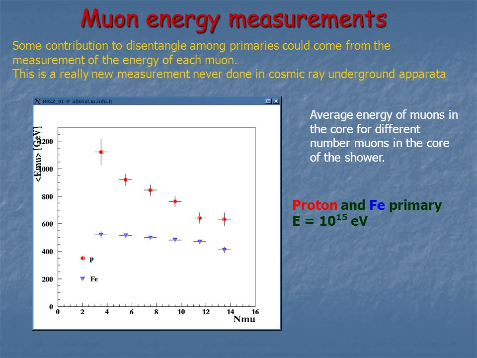 Muon energy measurements Some contribution to disentangle among primaries could come from the measurement of the energy of each muon.
