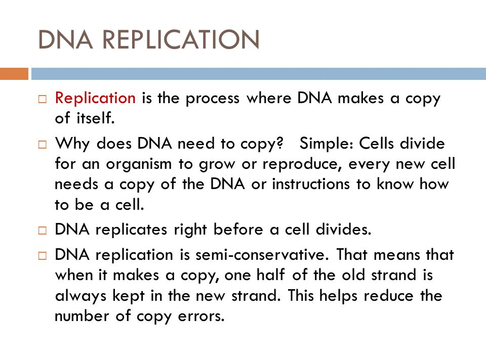 DNA REPLICATION  Replication is the process where DNA makes a copy of itself.  Why does DNA need to copy? Simple: Cells divide for an organism to gr