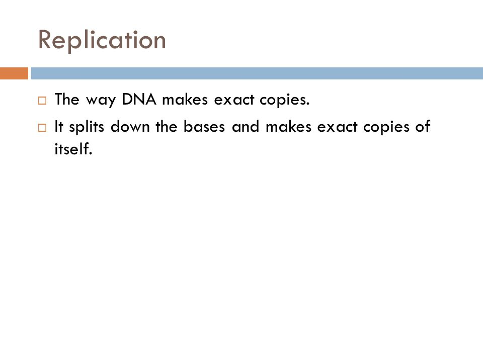 Replication  The way DNA makes exact copies.  It splits down the bases and makes exact copies of itself.