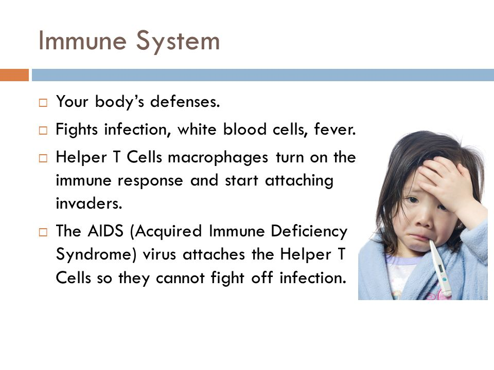 Immune System  Your body's defenses.  Fights infection, white blood cells, fever.  Helper T Cells macrophages turn on the immune response and start