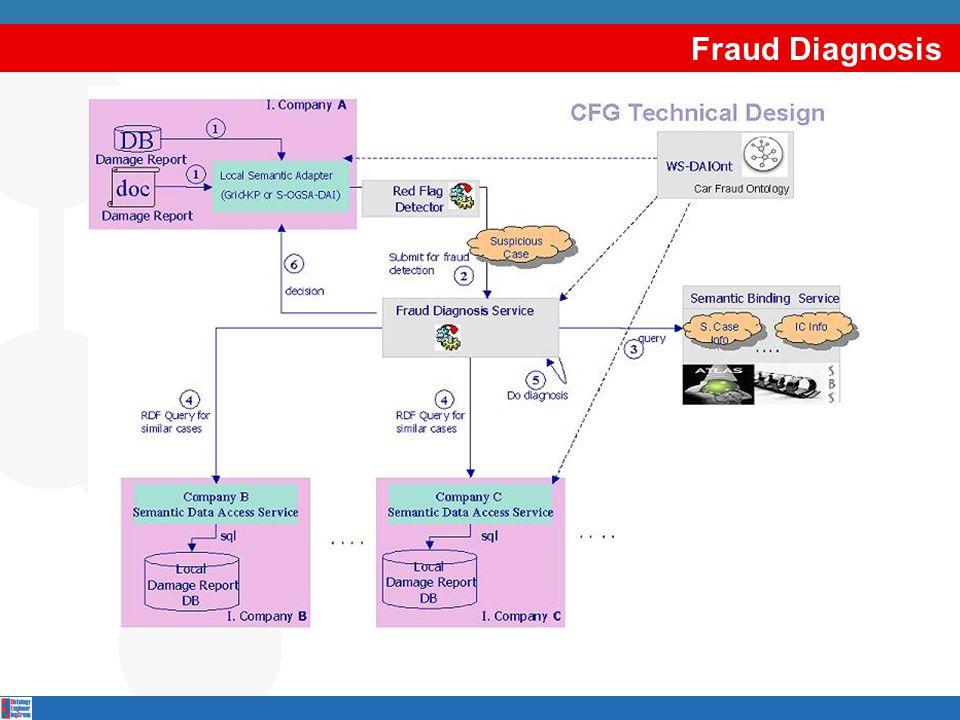 Fraud Diagnosis
