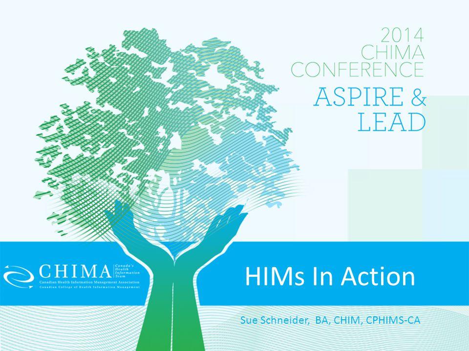HIMs In Action Sue Schneider, BA, CHIM, CPHIMS-CA