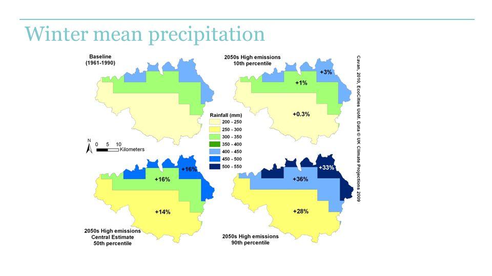 Winter mean precipitation