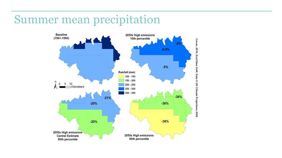 Summer mean precipitation