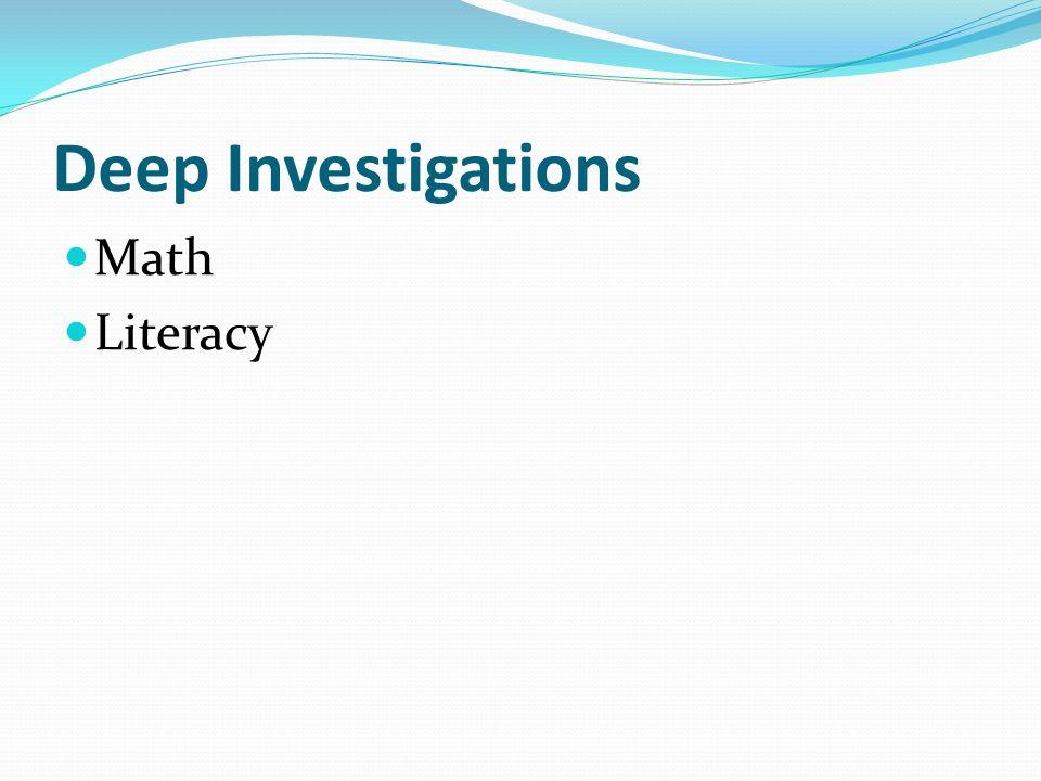 Deep Investigations Math Literacy