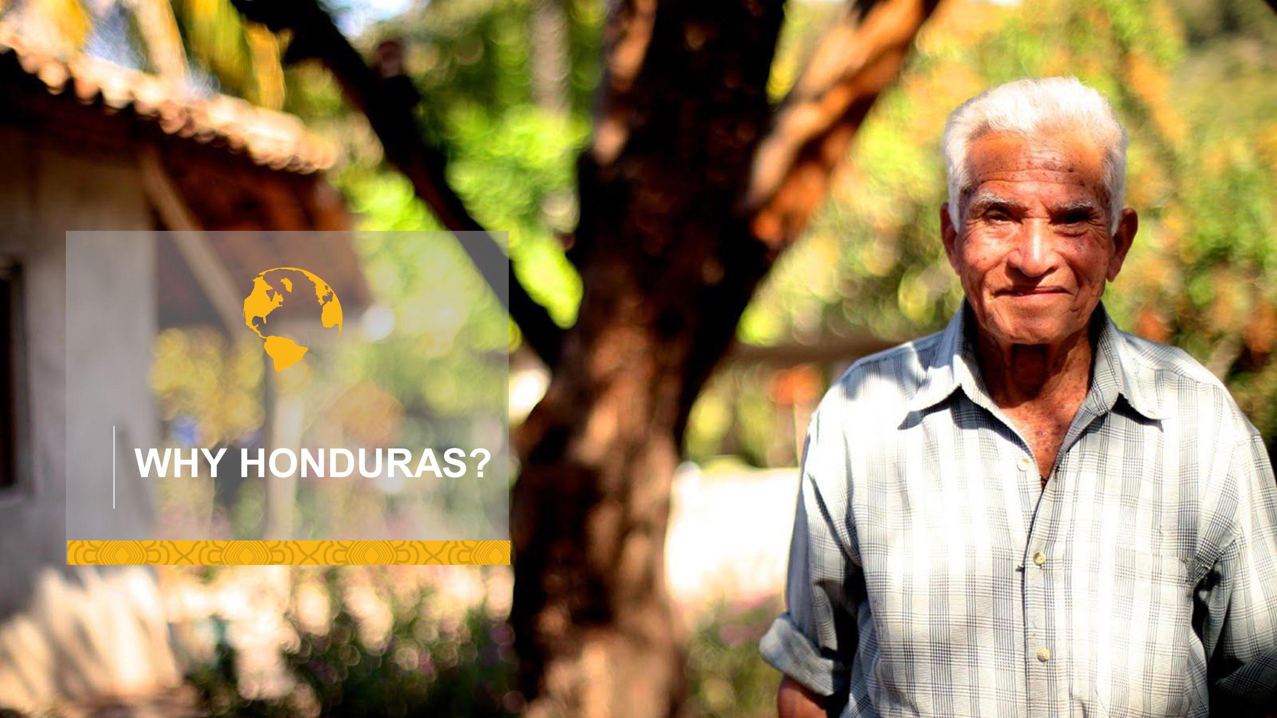 WHY HONDURAS
