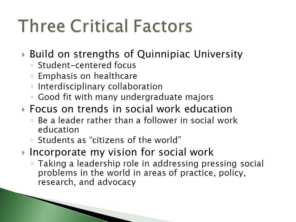  Build on strengths of Quinnipiac University ◦ Student-centered focus ◦ Emphasis on healthcare ◦ Interdisciplinary collaboration ◦ Good fit with many undergraduate majors  Focus on trends in social work education ◦ Be a leader rather than a follower in social work education ◦ Students as citizens of the world  Incorporate my vision for social work ◦ Taking a leadership role in addressing pressing social problems in the world in areas of practice, policy, research, and advocacy