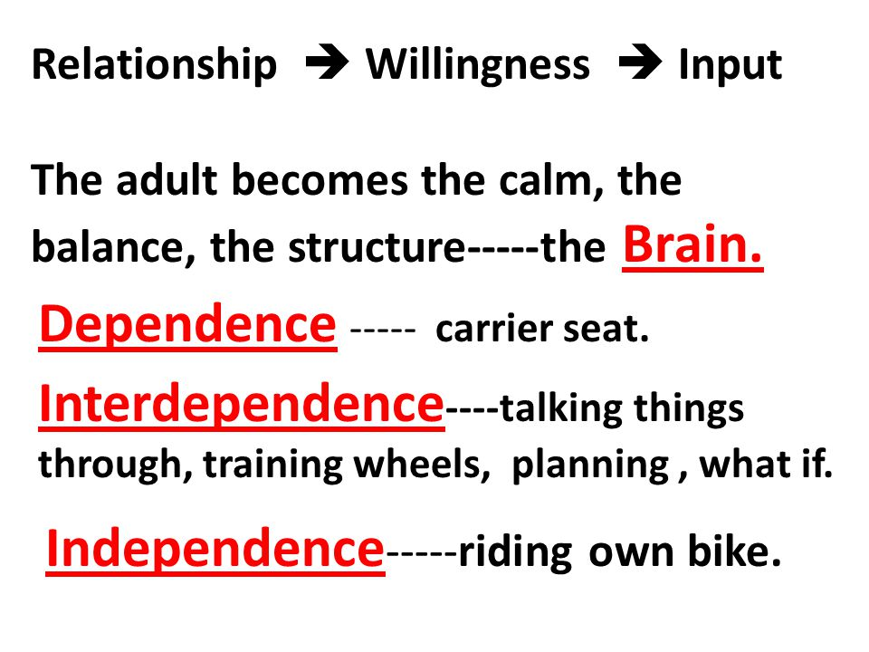 Relationship  Willingness  Input The adult becomes the calm, the balance, the structure-----the Brain. Dependence ----- carrier seat. Interdependenc