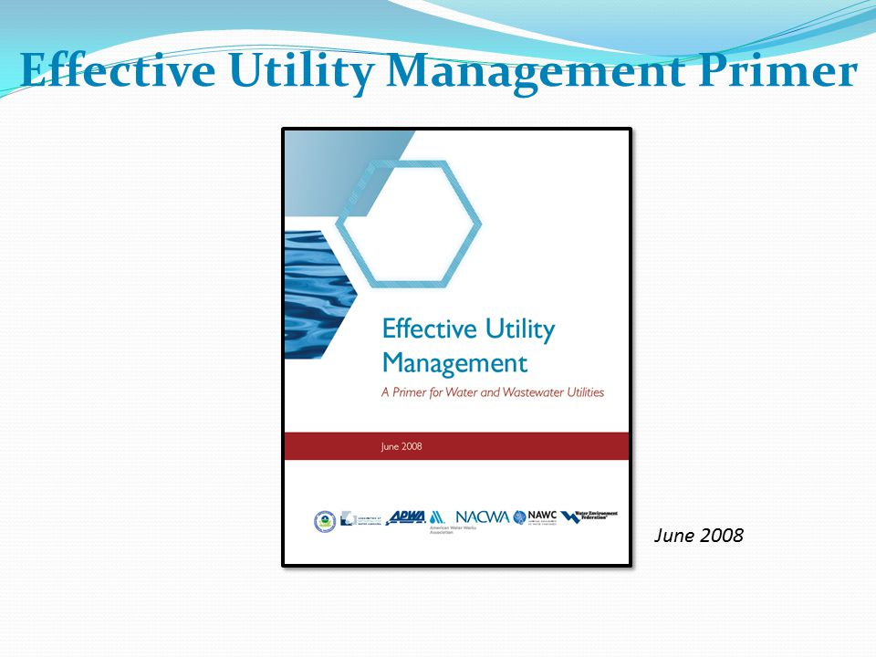 Effective Utility Management Primer June 2008