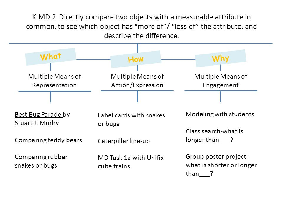 K.MD.2 Directly compare two objects with a measurable attribute in common, to see which object has more of / less of the attribute, and describe the difference.