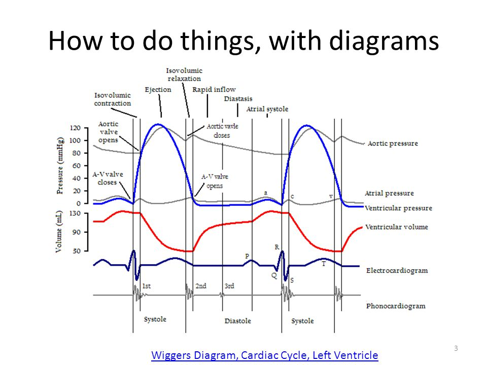 How to do things, with diagrams 3 Wiggers Diagram, Cardiac Cycle, Left Ventricle