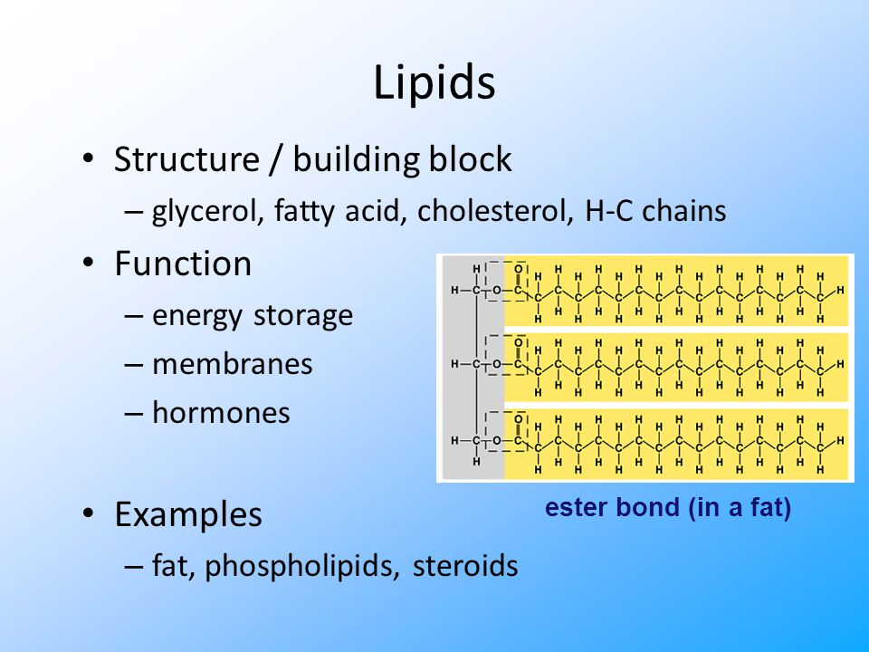 Carbohydrates Structure / monomer – monosaccharide Function – energy – raw materials – energy storage – structural compounds Examples – glucose, starch, cellulose, glycogen glycosidic bond