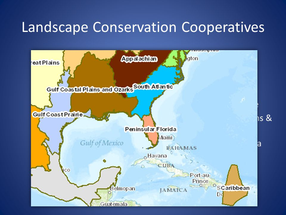 Landscape Conservation Cooperatives Appalachian Caribbean Gulf Coast Prairie Gulf Coastal Plains & Ozarks Peninsular Florida South Atlantic