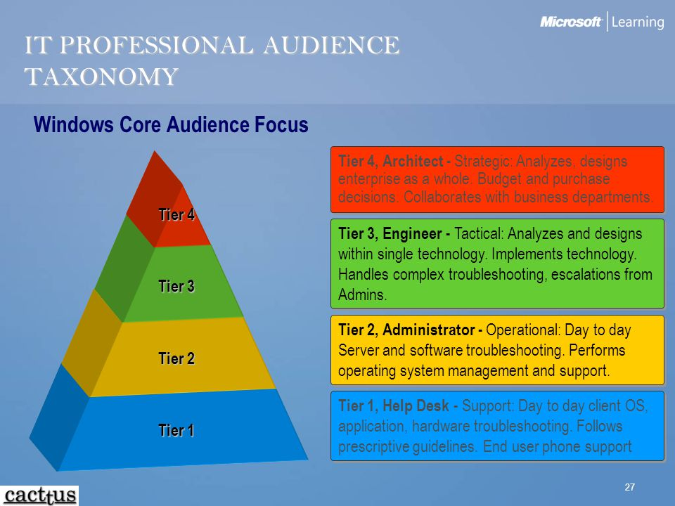 27 IT PROFESSIONAL AUDIENCE TAXONOMY Tier 1 Tier 2 Tier 3 Tier 4 Tier 4, Architect - Strategic: Analyzes, designs enterprise as a whole. Budget and pu