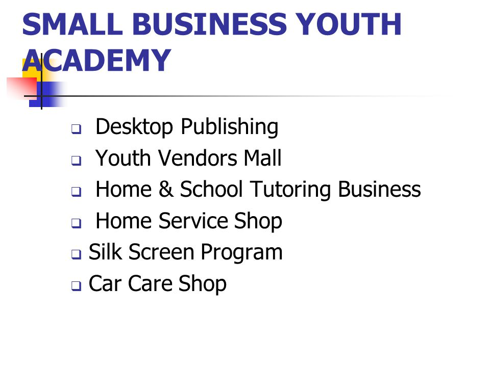 SMALL BUSINESS YOUTH ACADEMY  Desktop Publishing  Youth Vendors Mall  Home & School Tutoring Business  Home Service Shop  Silk Screen Program  Car Care Shop