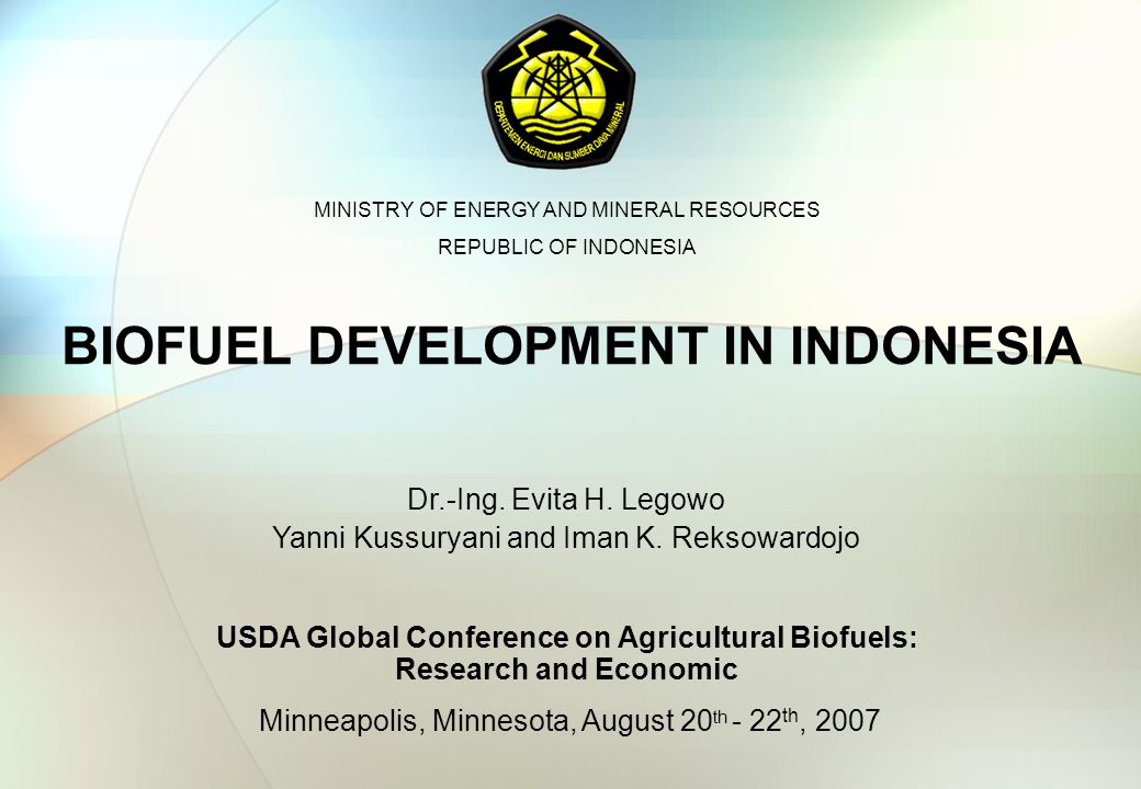 BIOFUEL DEVELOPMENT IN INDONESIA Minneapolis, Minnesota, August 20 th - 22 th, 2007 Dr.-Ing.