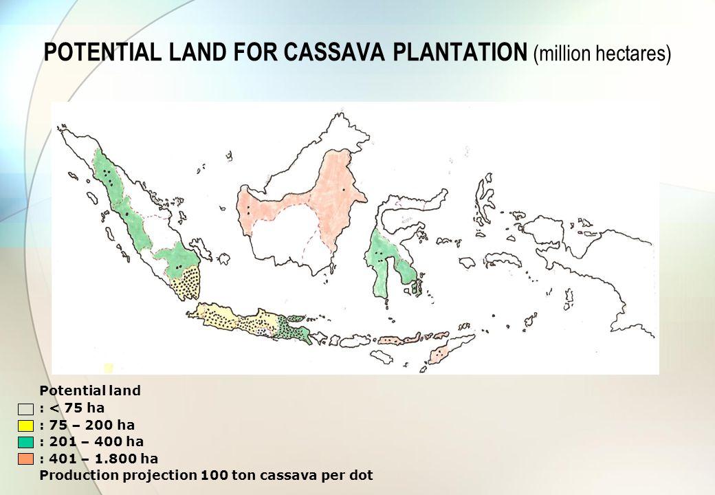 POTENTIAL LAND FOR CASSAVA PLANTATION (million hectares) Potential land : < 75 ha : 75 – 200 ha : 201 – 400 ha : 401 – 1.800 ha Production projection 100 ton cassava per dot